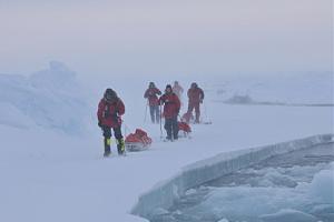 Арктика манит радиолюбителей