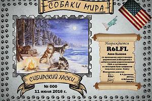 Сибирский Хаски (Siberian Husky)