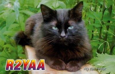 R2YAA