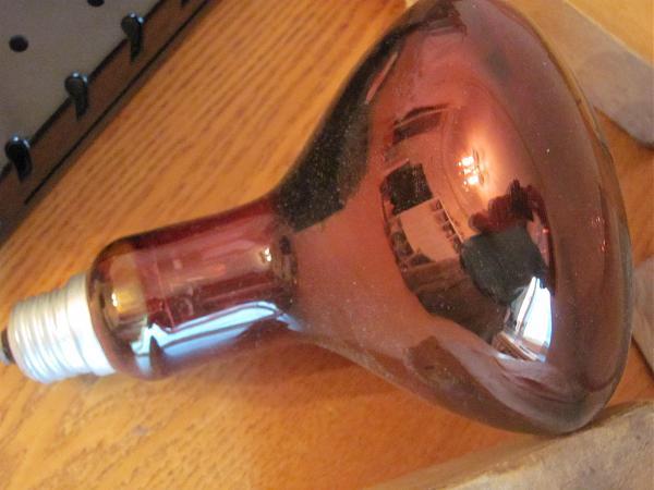 Продам Р3033 , красная лампа