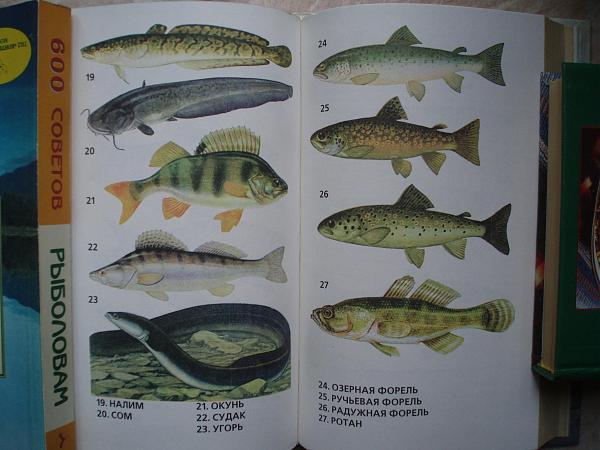Продам Kнига CПРАВОЧНОЕ И3ДАНИЕ. Секреты Рыболовства